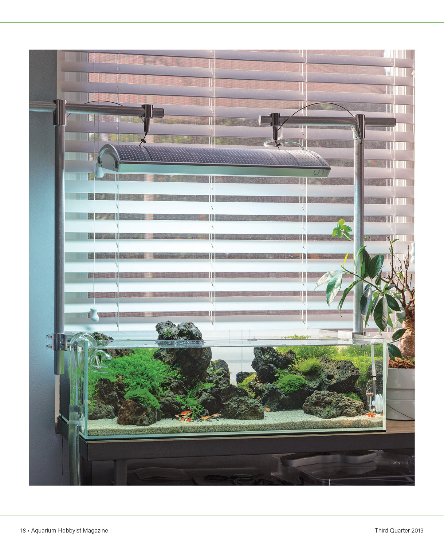 Home | Aquarium Hobbyist Magazine